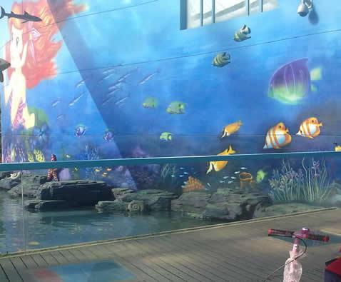 海洋馆动物海报
