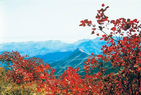 随州大洪山风景区一日游高清图片