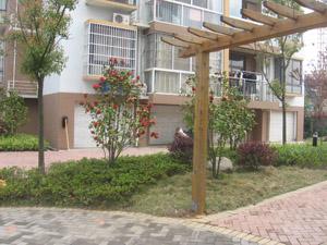 小品绿化 安徽省斐然园林建筑有限公司