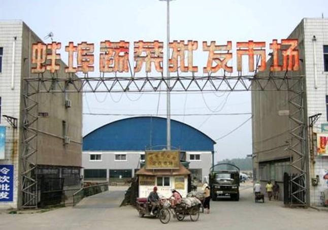 蚌埠海吉星logo