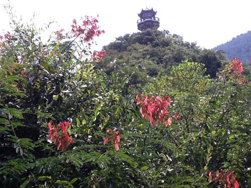 风景区 贵州惠水康正旅游开发有限公司