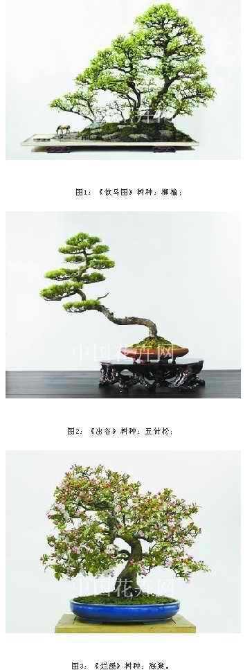 他结合树木盆景和山水盆景的表现手法,将传统的水旱盆景进行了成功的