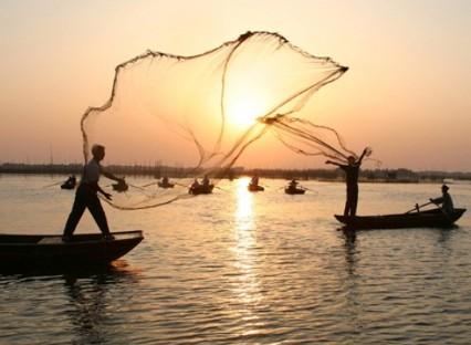 沱湖湿地风景区-蚌埠旅游网